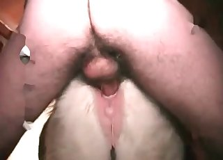 Anal Videos / Animal Zoo Porn / Most popular Page 1
